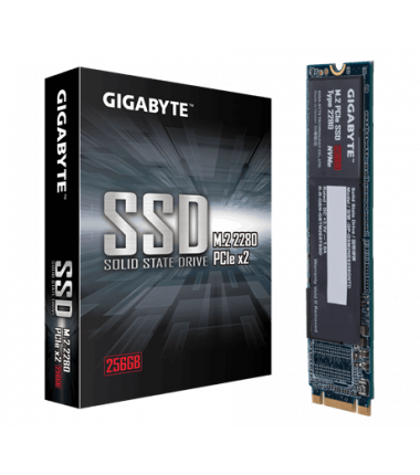 Gigabyte GP-GSM2NE8256GNTD 256 GB, SSD interface M.2 NVME, Write speed 800 MB/s, Read speed 1200 MB/s